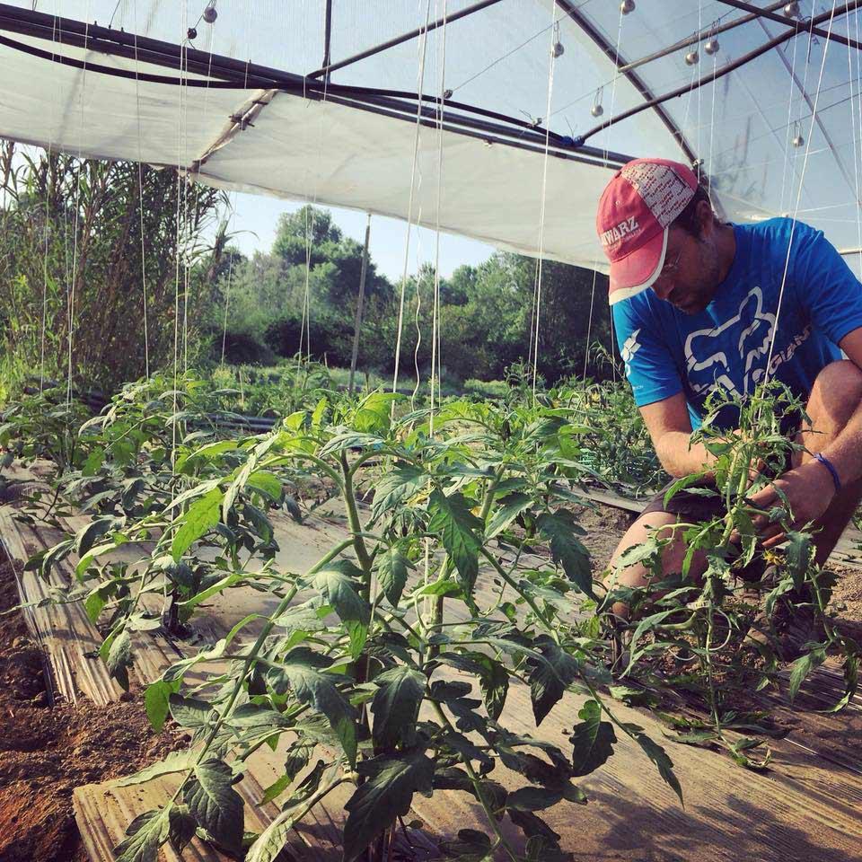 Site de rencontre pour les agriculteurs et les gens du pays